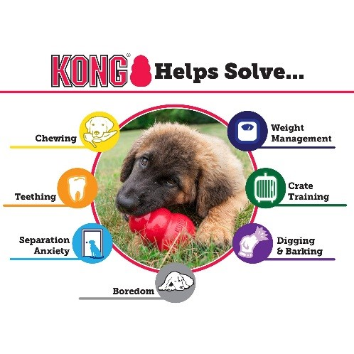 best puppy products