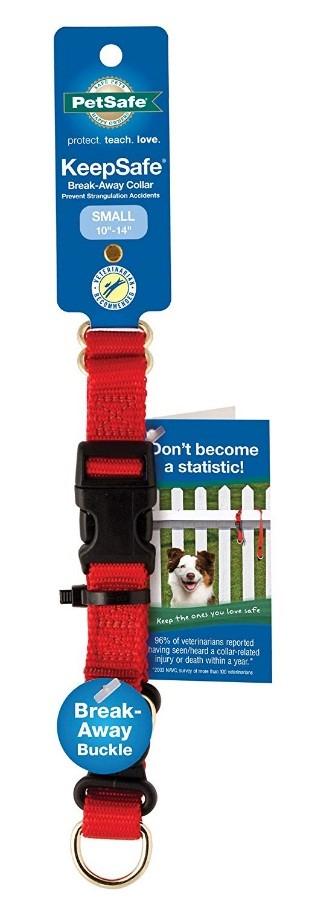 puppy advice