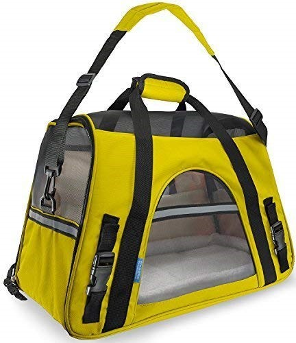 delta approved pet carrier