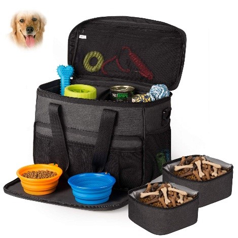 pack for road trip with a dog