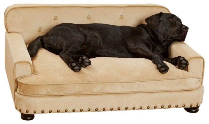 luxury dog sofa