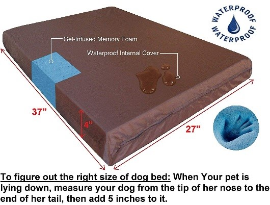 odourless dog beds