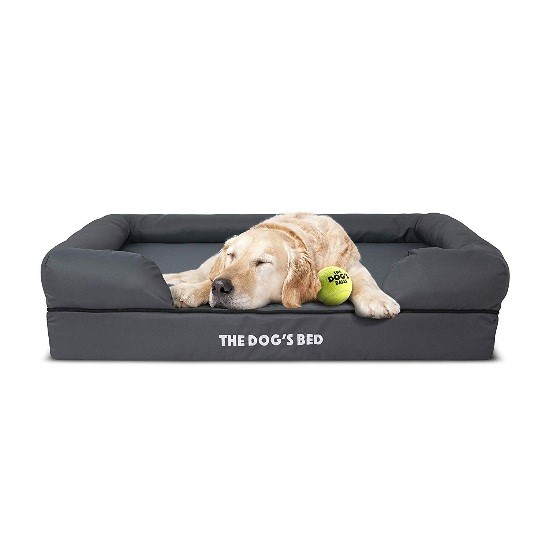 dog incontinence bed