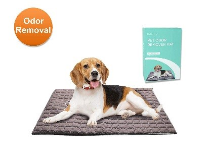 easy to clean dog mats