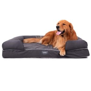 Best Waterproof Dog Bed for Incontinence