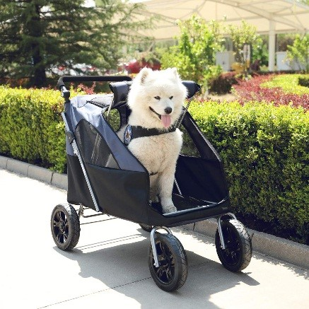 large dog trolley