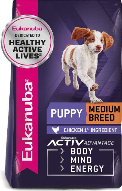 dog food for dachshund