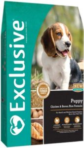 beagles dog food