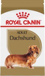 royal canin dachshund