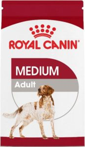 royal canin for beagles